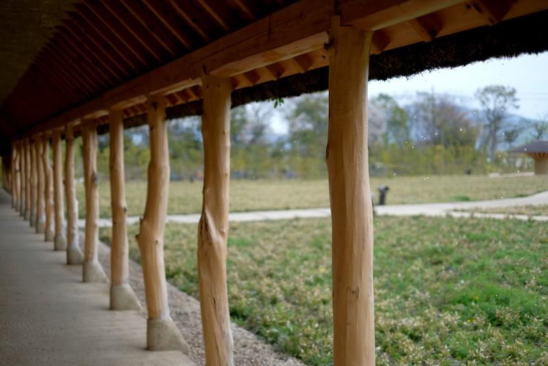 ラコリーナ近江八幡|草屋根から伝う雫
