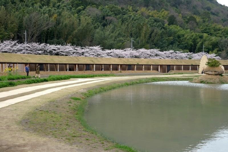 ラコリーナ近江八幡|敷地内にある田んぼ