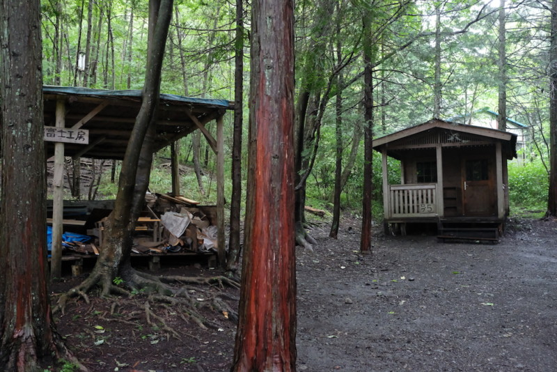 ACN西富士オートキャンプ場|木立に囲まれて