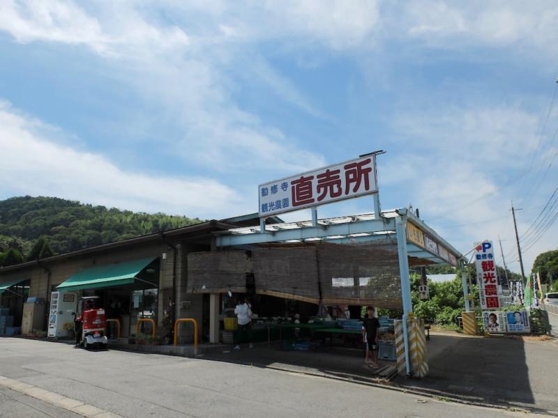 勧修寺観光農園(京都市山科区)