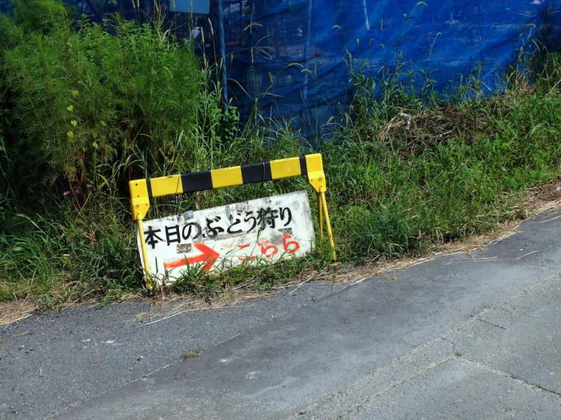 勧修寺観光農園(京都市山科区)|案内看板