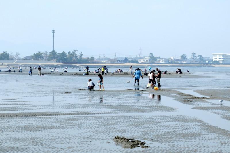 三重・御殿場浜海岸