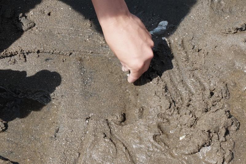 マテ貝の穴に塩を投入