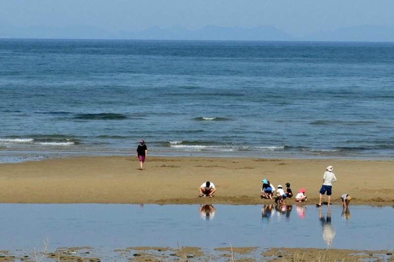 観音寺ファミリーキャンプ場|有明浜で潮干狩り