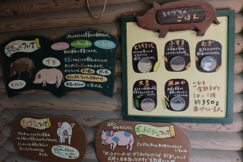 伊賀の里モクモク手作りファーム|ミニブタハウス内の掲示物