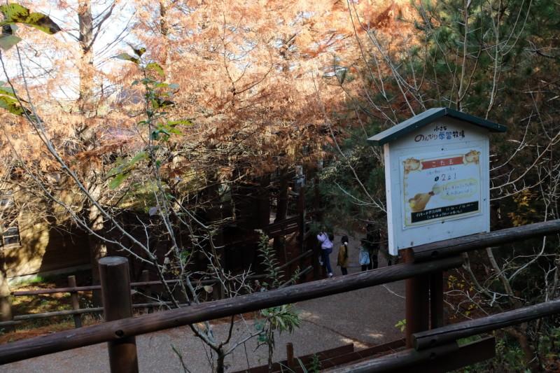 伊賀の里モクモク手作りファーム|のんびり学習牧場