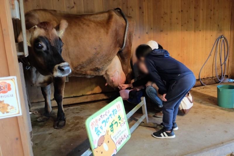 伊賀の里モクモク手作りファーム|乳搾り体験