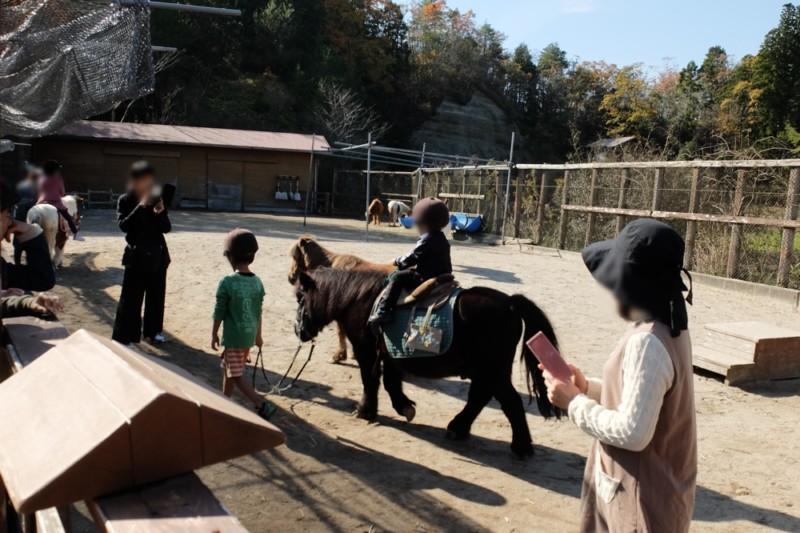 伊賀の里モクモク手作りファーム|ポニー乗馬体験