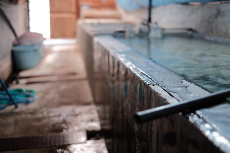 天神産紙工場|水槽