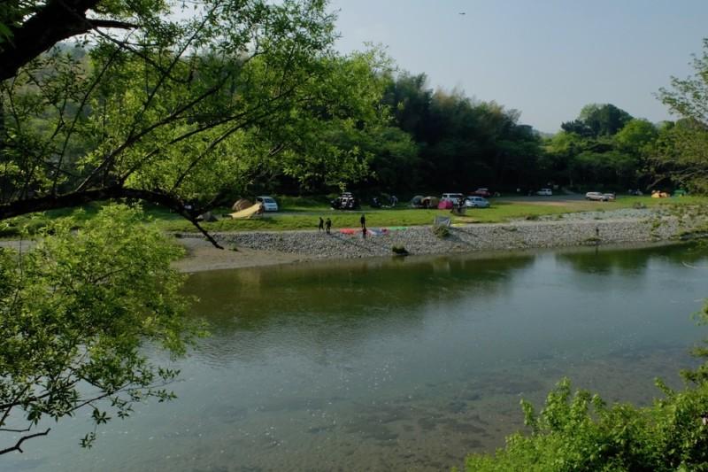 知清キャンプ場(愛媛県内子町)|サイトの様子