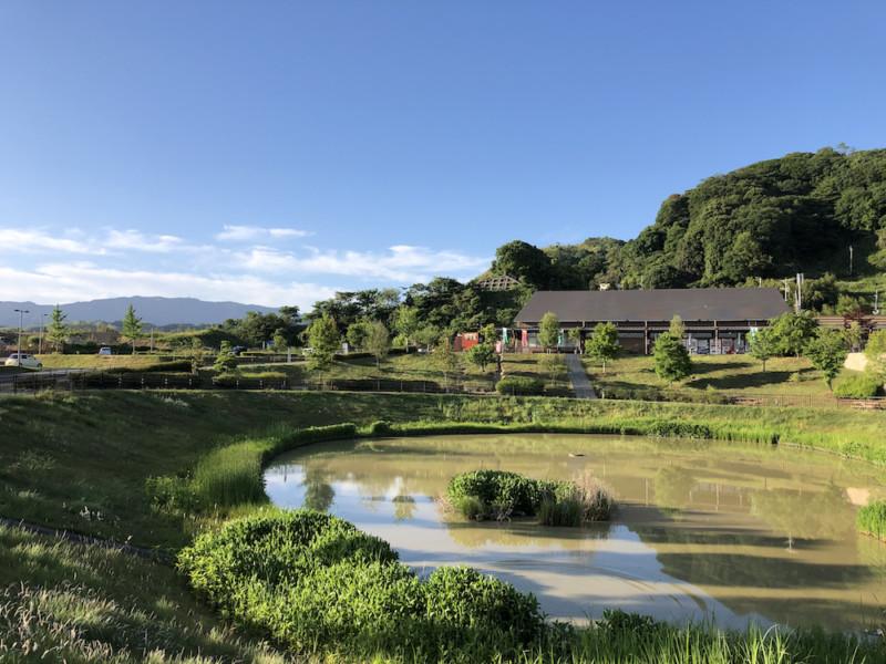 道の駅 愛彩ランド(大阪・岸和田)|中央の池