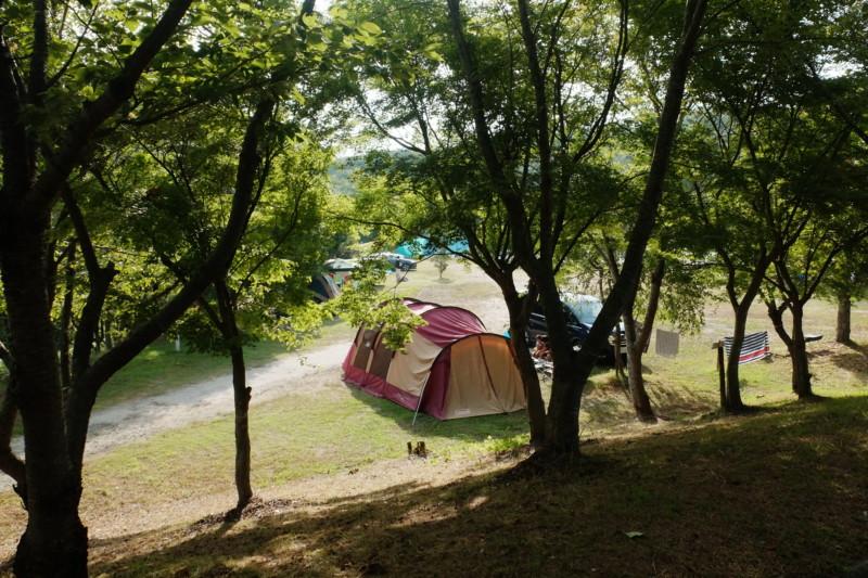 松江市宍道ふるさと森林公園(島根)|テントサイト