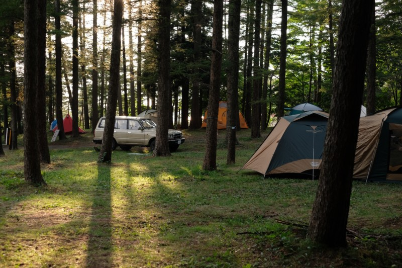美山公園キャンプ場(新潟・糸魚川市)|サイトの様子