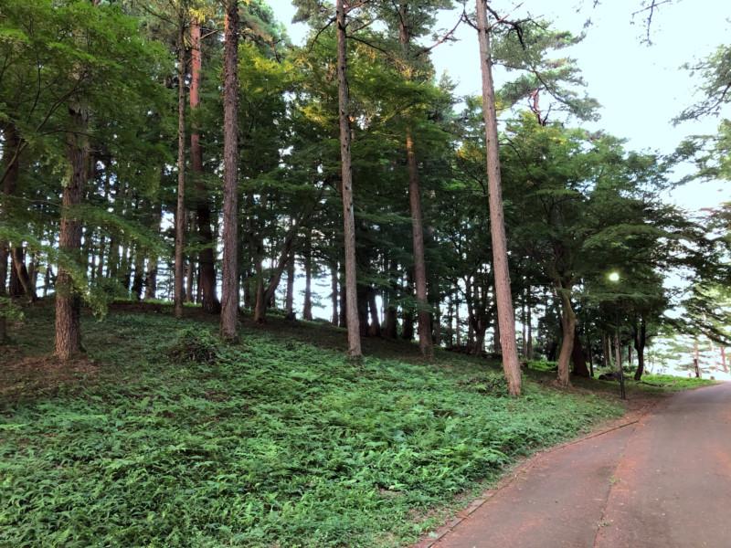 美山公園キャンプ場(新潟・糸魚川市)|キャンプ場へと続く道